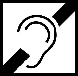 audiolog siedlce